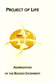 Cover of The project of life.